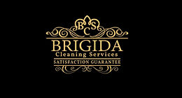 brigida cleaning.jpg