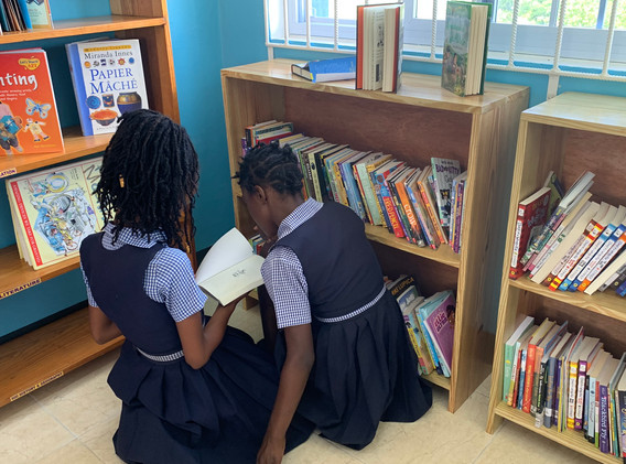 Students in ROI libary at Carron Hall Primary