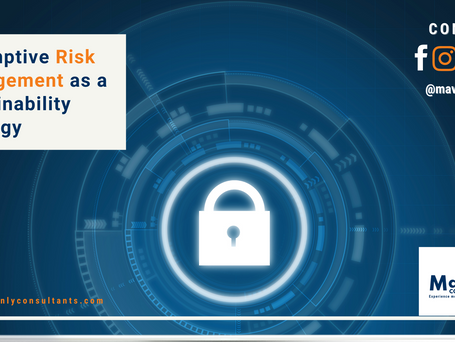 Preemptive Risk Management as a Sustainability Strategy