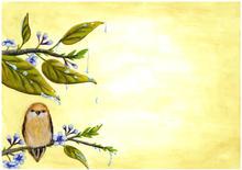 lentevogel01