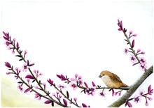 lentevogel02