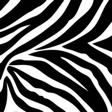 Zebra Print 1.jpg