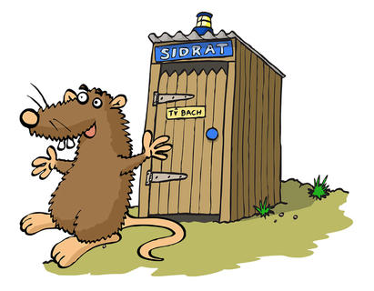 SIDRAT  We developed this time travelling rat (and his Ty Bach 'TARDIS') for the Anglesey Heritage Trails.