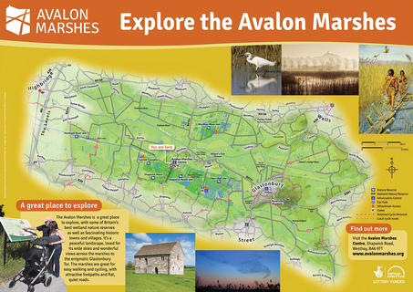 AVALON MARSHES, SOMERSET  This map was a key part of a large project we worked on, producing signage and leaflets to promote and interpret the Avalon Marshes in Somerset.