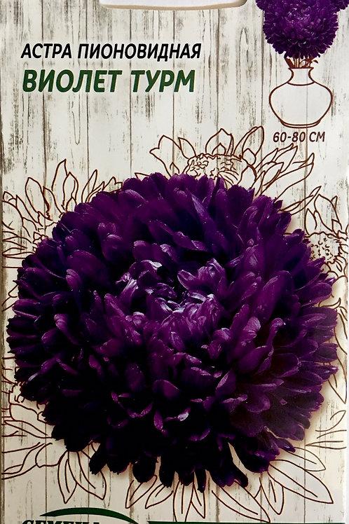 Астра пионовидная Виолет Турм /0,25г/  Семена Украины.