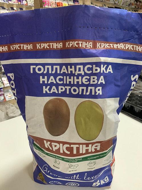 Картофель Кристина /5кг/ Бумажный мешок