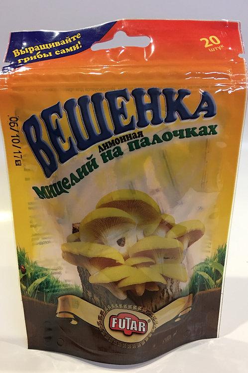 Мицелий грибов Вешенка лимонная /20шт палочек/
