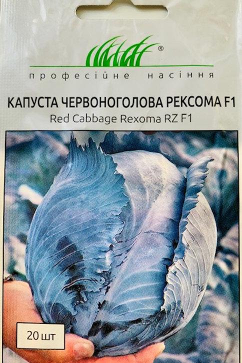 Капуста краснокочанная Рексома F1 /20шт/Професійне насіння.