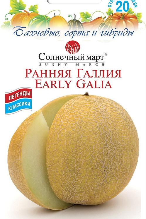 Дыня Ранняя Галия /20шт/ Солнечный март.