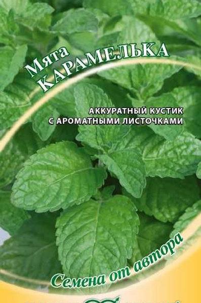 Мята Карамелька /0,05г/ Гавриш