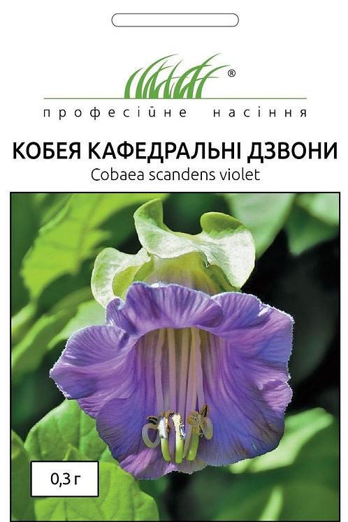 Кобея Кафедральный звон /0,3г/ Професійне насіння.