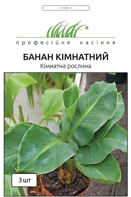 Банан Комнатный /3шт/ Професійне насіння.
