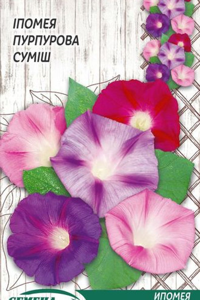 Ипомея Пурпурная смесь /1г/ Семена Украины.