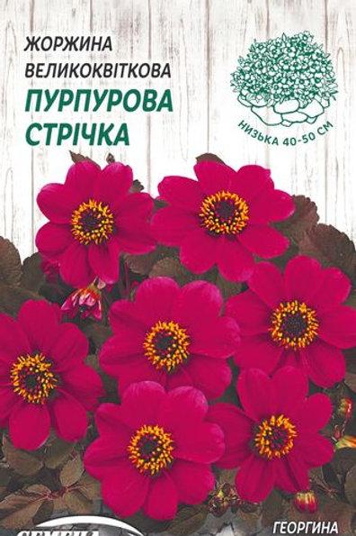Георгина Пурпурная лента /0,2г/ Семена Украины.