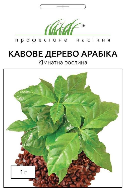 Кофейное дерево Арабика /1г/ Професійне насіння.