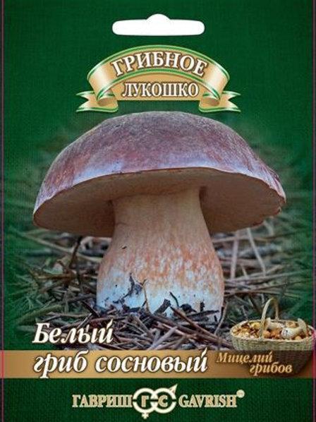 Мицелий Белый гриб Сосновый на субстрате, 60 мл