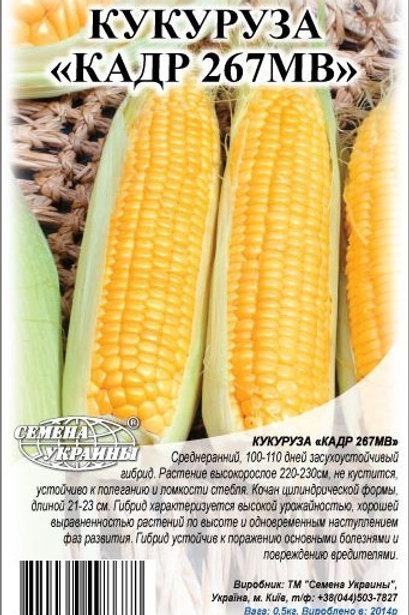 Кукуруза кормовая Кадр 267 МВ /1кг/ Семена Украины