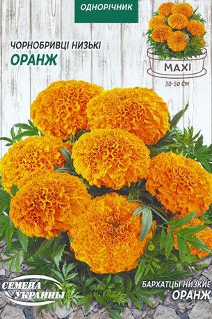 Бархатцы низкорослые Оранж /3г/ Семена Украины.