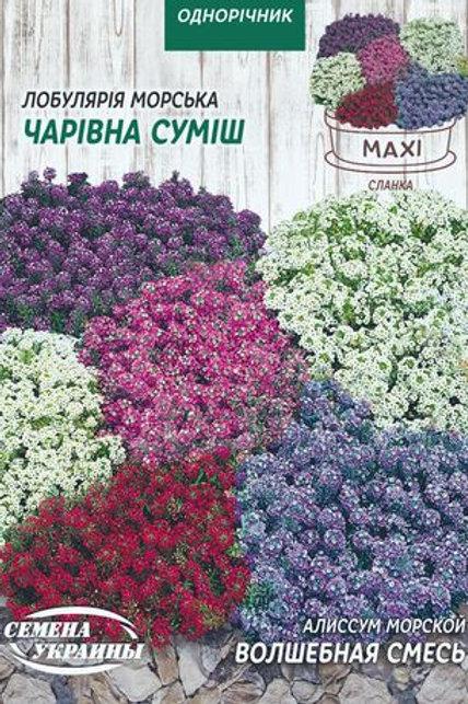 Алиссум Волшебная смесь /2г/ Семена Украины.