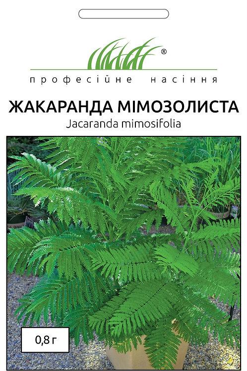 Жакаранда мимозолистная /0,8г/Професійне Насіння. .