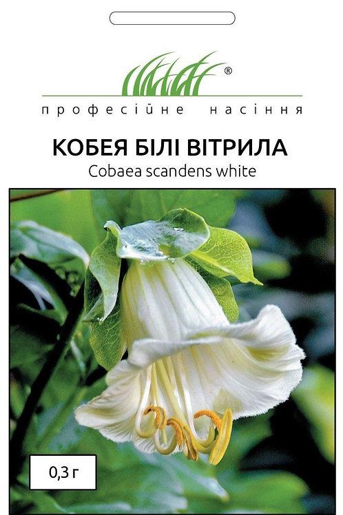 Кобея Белые паруса /0,3г/ Професійне насіння.