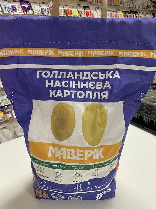Картофель Маверик /5кг/ Бумажный пакет.