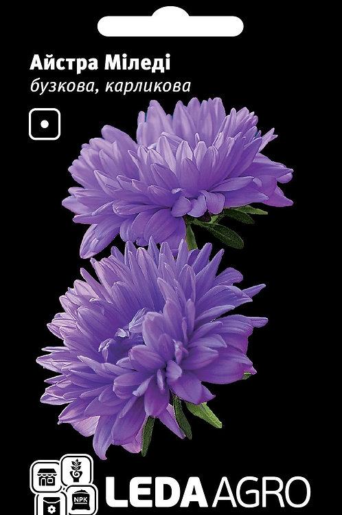 Астра карликовая Миледи Фиолетовая, /0,2г/Леда-Агро.