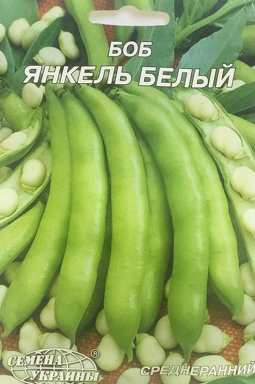 Боб Янкель Белый /20г/ Семена Украины
