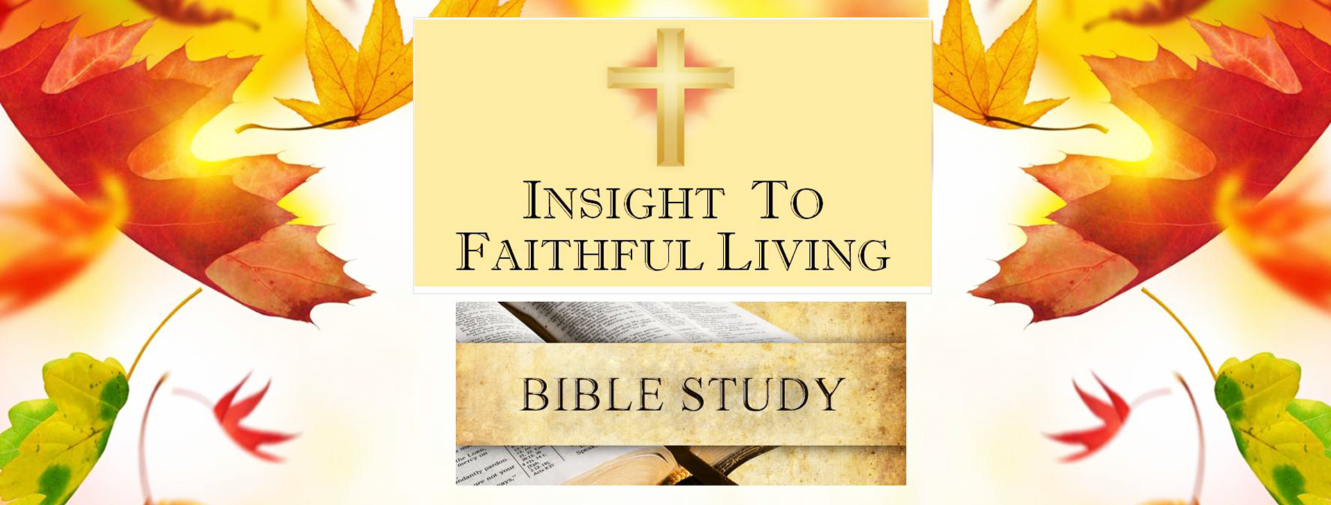 biblestudy_website