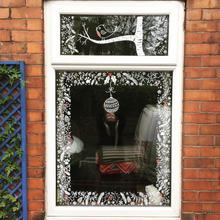 Winter Window with robin