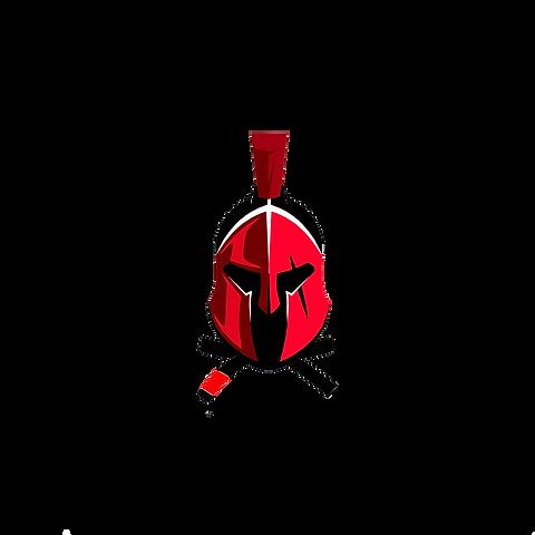 лого шлем.png