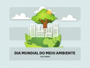 As boas práticas ambientais na Construção Civil como ações estratégicas e de geração de valor