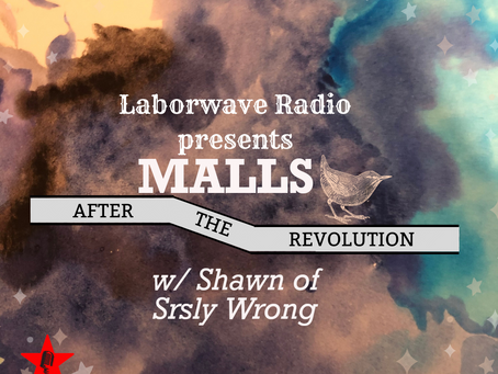 Malls After the Revolution w/ Shawn from Srsly Wrong