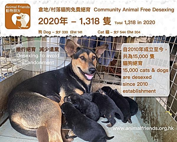 動物朋友 Animal Friends 倉地/村落貓狗免費絕育.jpg