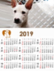 動物朋友 2019 月曆 Animal Friends 2019 Calendar