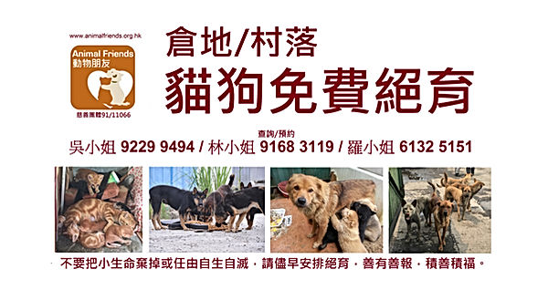 動物朋友橫額  Animal Friends Banner