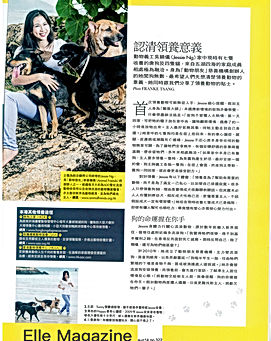 Animal Friends Elle magazine interview