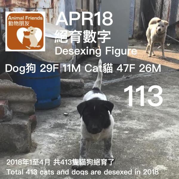 TNR APR18