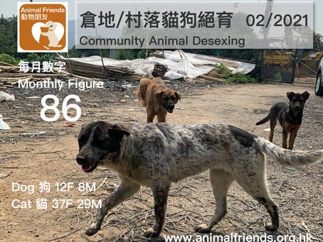 2021年2月份 - 動物朋友倉地/村落貓狗免費絕育數字 - 86隻