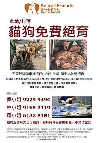 動物朋友倉地村落貓狗免費絕育 community animal free desexing neuter and spay