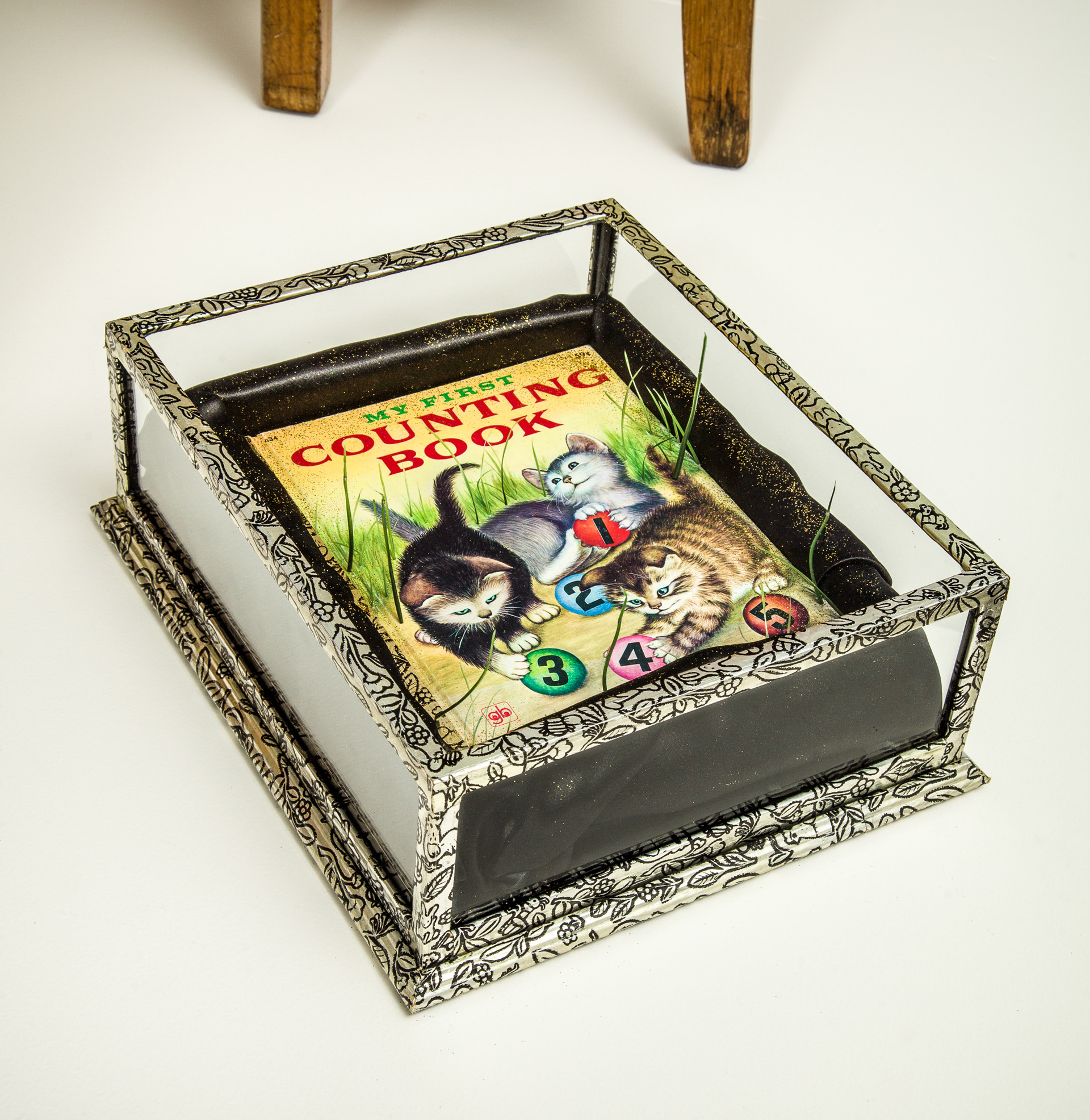 An unaltered copy of the original book is contained in a plexiglass box that resembles a coffin, thus accentuating the extinction theme. Grass grows from book face through the box's clear top.