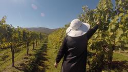 Mom in vineyard.png