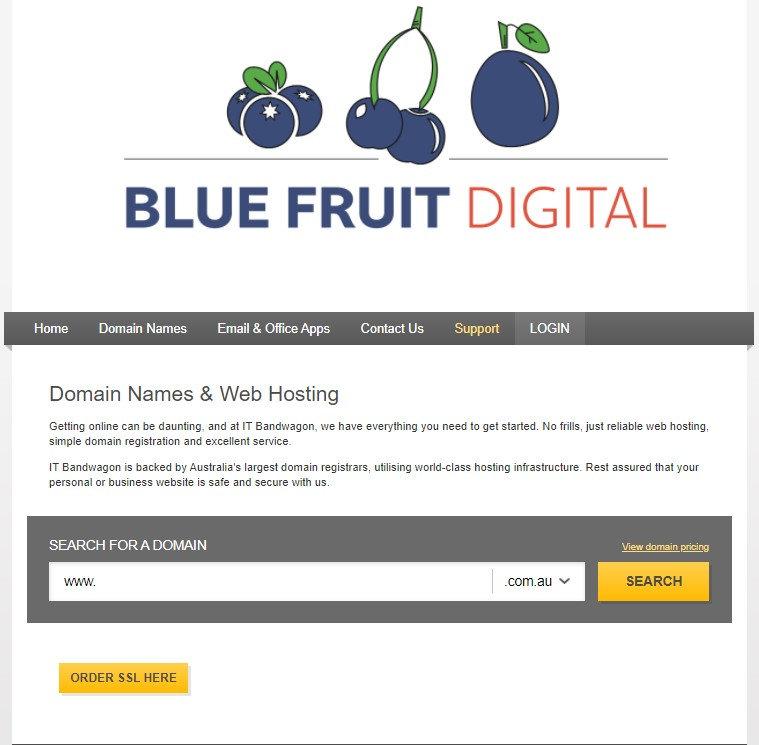 BlueFruit-Hosting.jpg