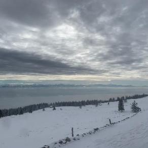 Högtid Franches Montagnes