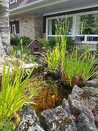 Berts Pond