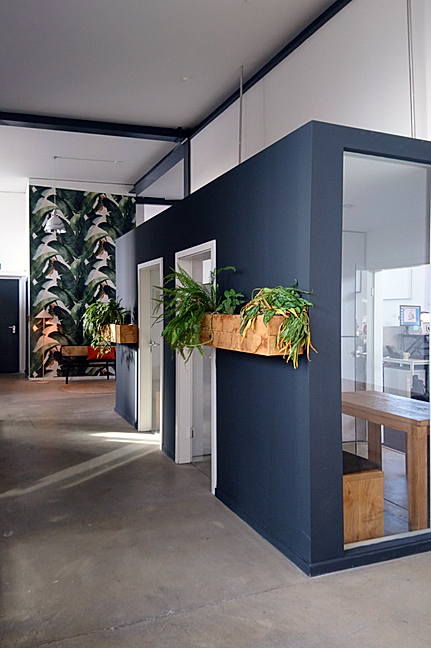Office meeting booths with plants