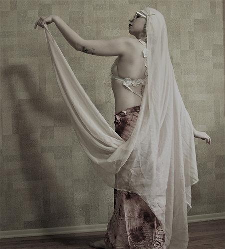 The Lady of the Harem Photo Set