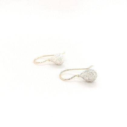Zigt zilver met gouden oorsieraden