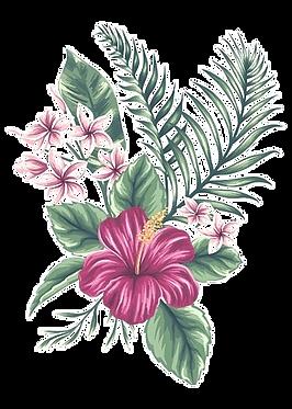 frangipani_edited_edited.png