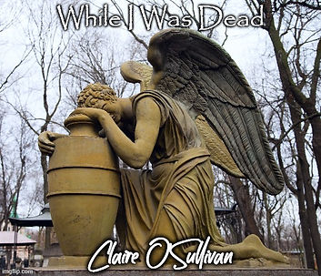 While I Was Dead Cover.jpg